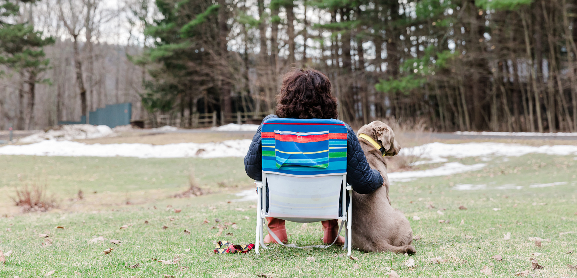 Photo of Francesca Zambello; the viewer sees her back; she is sitting in a low-to-the-ground chair; to the right of her sits a silver labrador.